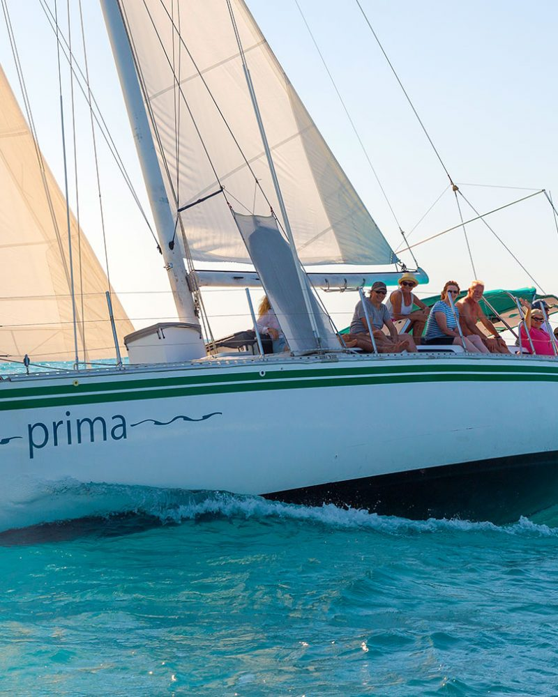 Prima---Sailing-2---Airlie-Beach-Tourism