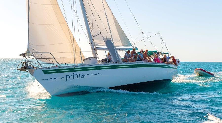 Prima---Sailing-2---Airlie-Beach-Tourism